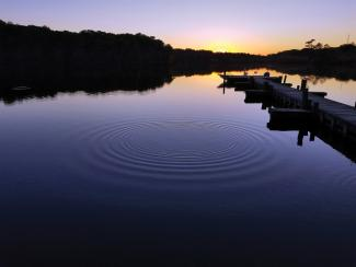 Natural and recreational opportunities abound at Killens Pond State Park, centrally located in the heart of Kent County.