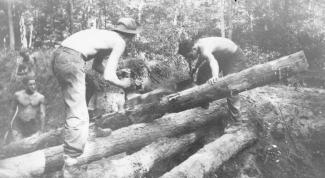 CCC workers sawing a log in Kent County.